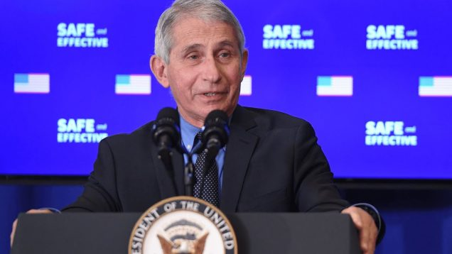 These are safe and effective products': Dr Fauci addresses Covid vaccine fears