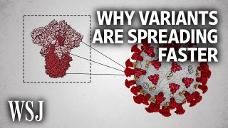The Science Behind Why New Covid Variants Are Spreading Faster | WSJ