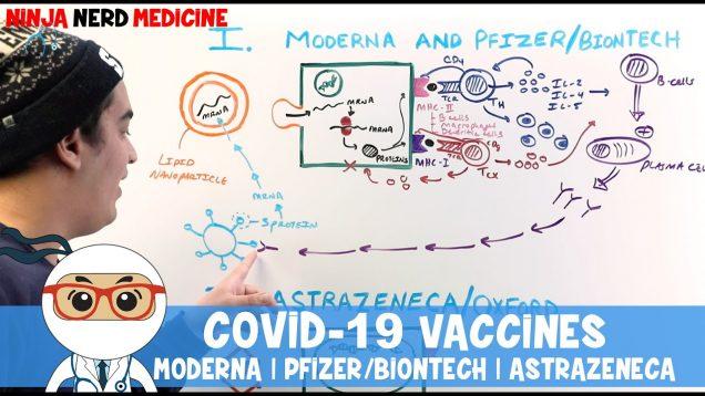 COVID-19 Vaccines: MODERNA   PFIZER/BIONTECH   ASTRAZENECA