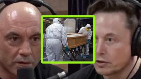 Elon Musk Thinks Coronavirus isn't as Lethal as What We've Been Led to Believe