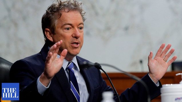 Rand Paul CLASHES with witness over COVID-19 vaccines