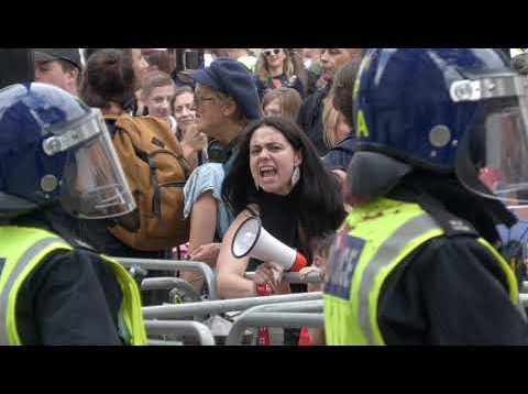 Police disperse 'medical freedom' protesters in London after red paint bombs thrown at Downing St