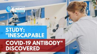 """Study: """"Inescapable COVID-19 Antibody"""" Discovered"""